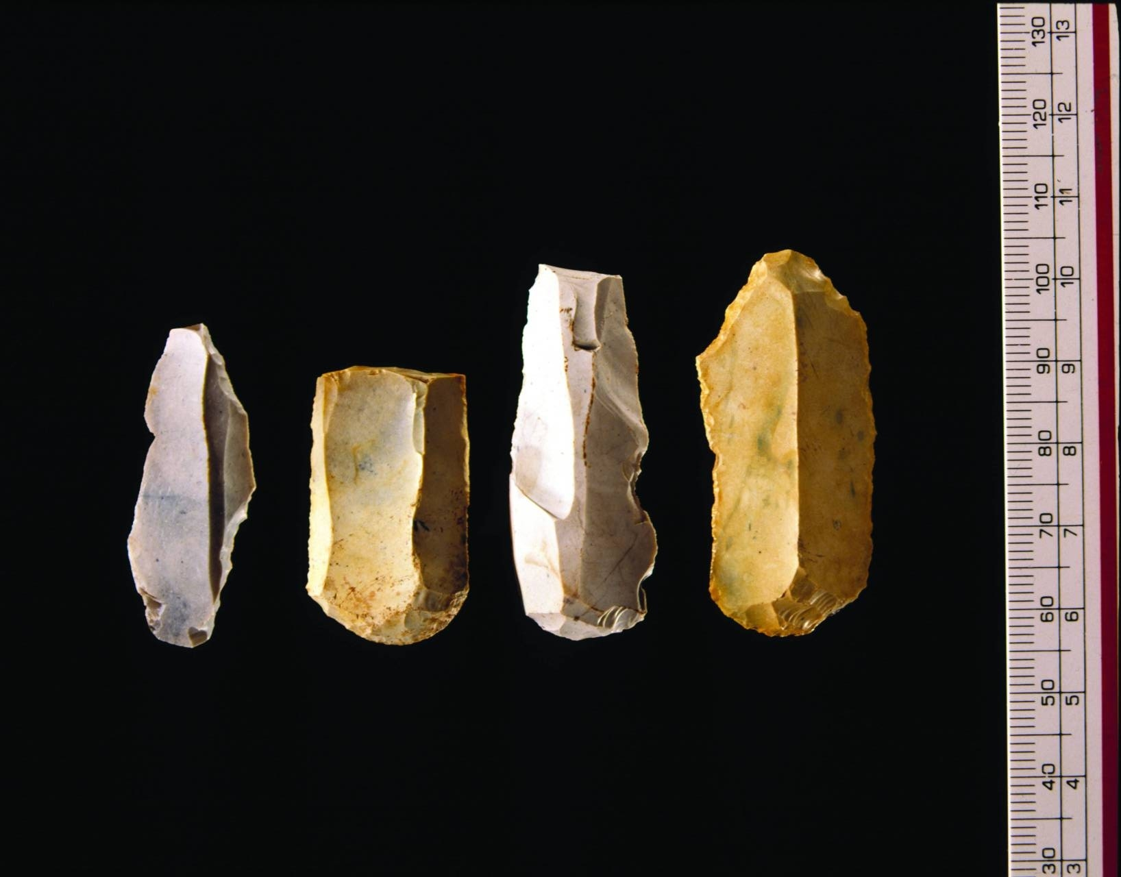 A photo of four worked flints, all roughly oblong, between 20 and 40 mm long.