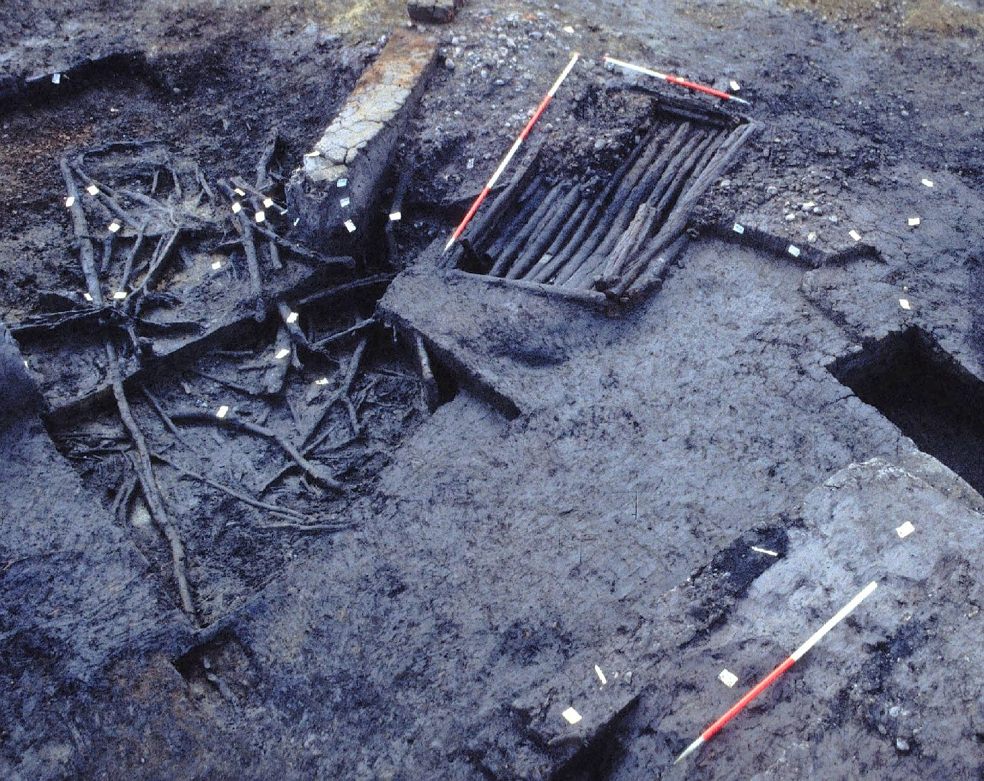 A photo of an archaeological excavation, showing very dark earth containing wooden structures and debris.