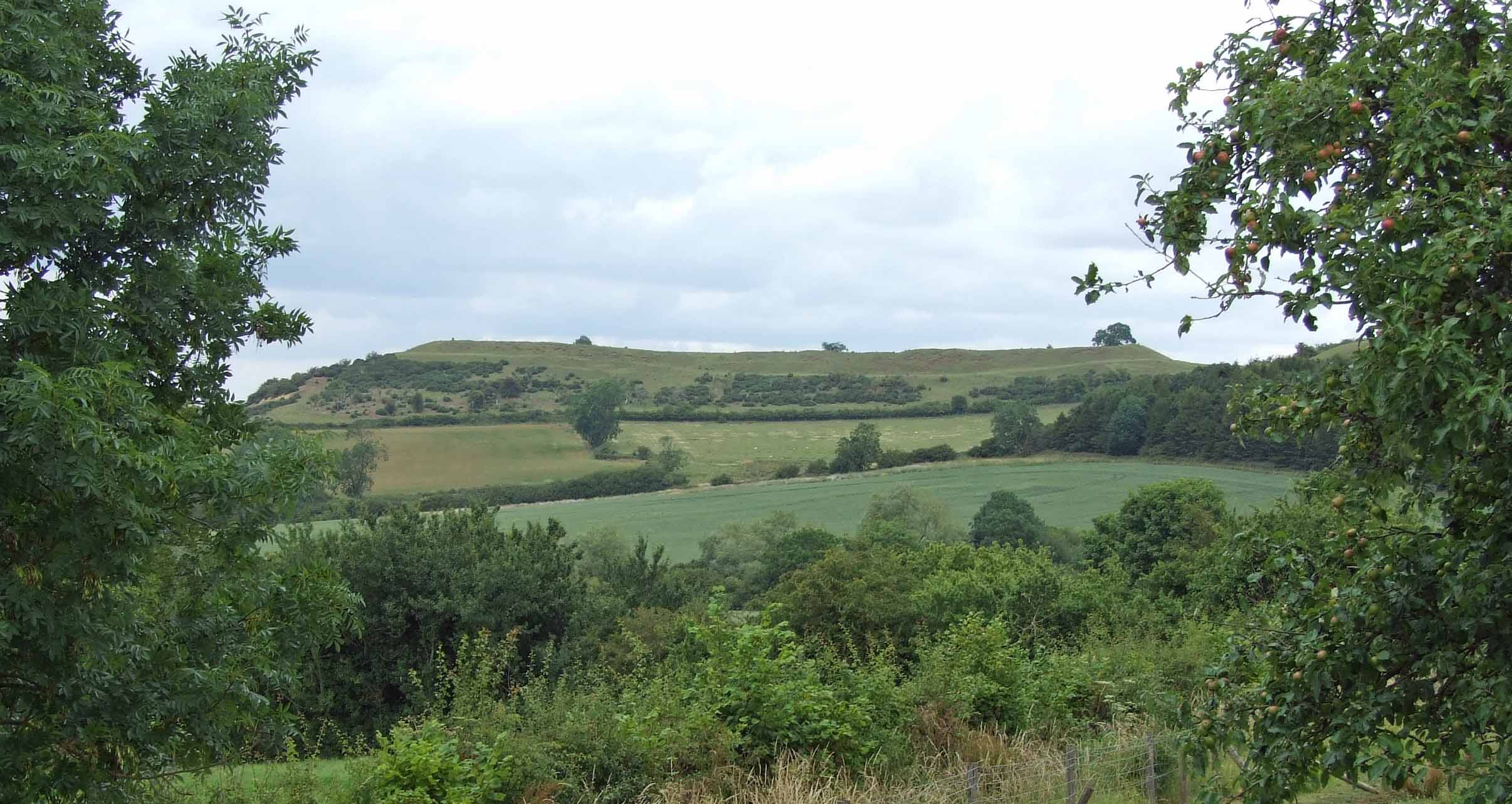 A photograph of a distant hill fort in a green landscape, seen through the gap between two trees. The edges and flat top of the fort are clearly visible.