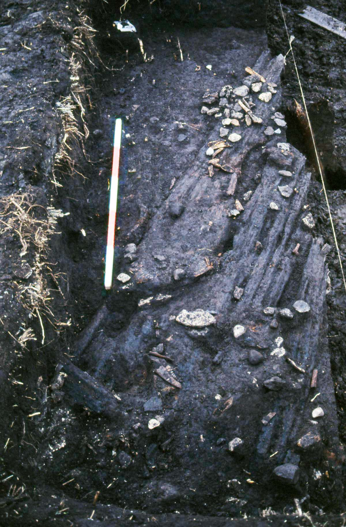 A photo of an archaeological excavation showing a layer of debris overlaying a layer of well-preserved timber.