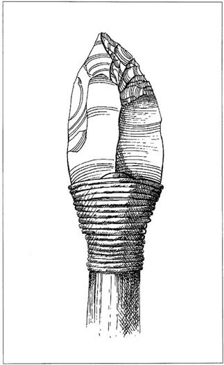 An illustration of a worked flint bound to a wooden shaft.
