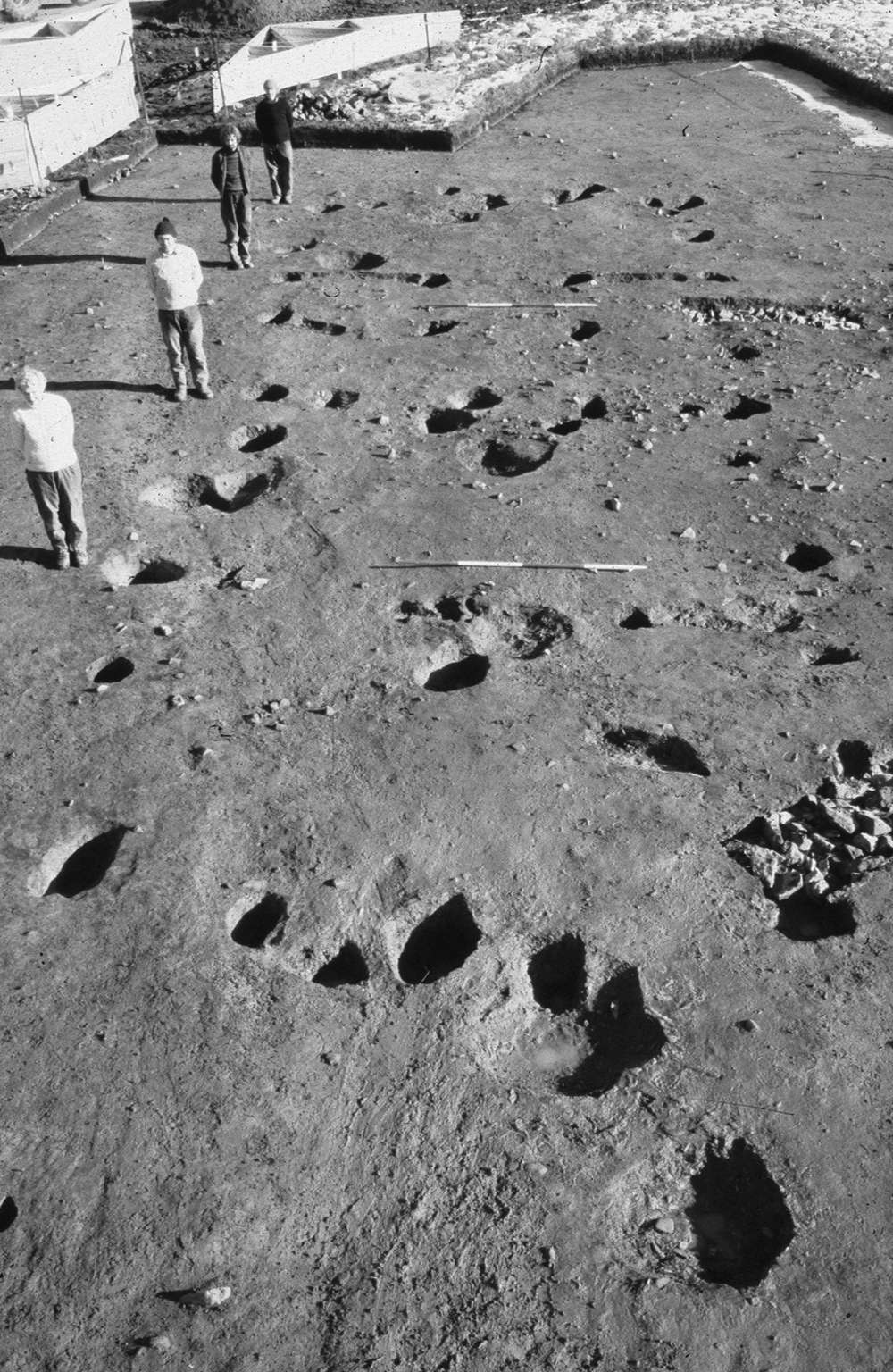 A photo showing an archaeological excavation. Four people stand to the left of an array of holes in the layout of a moderately-sized building.