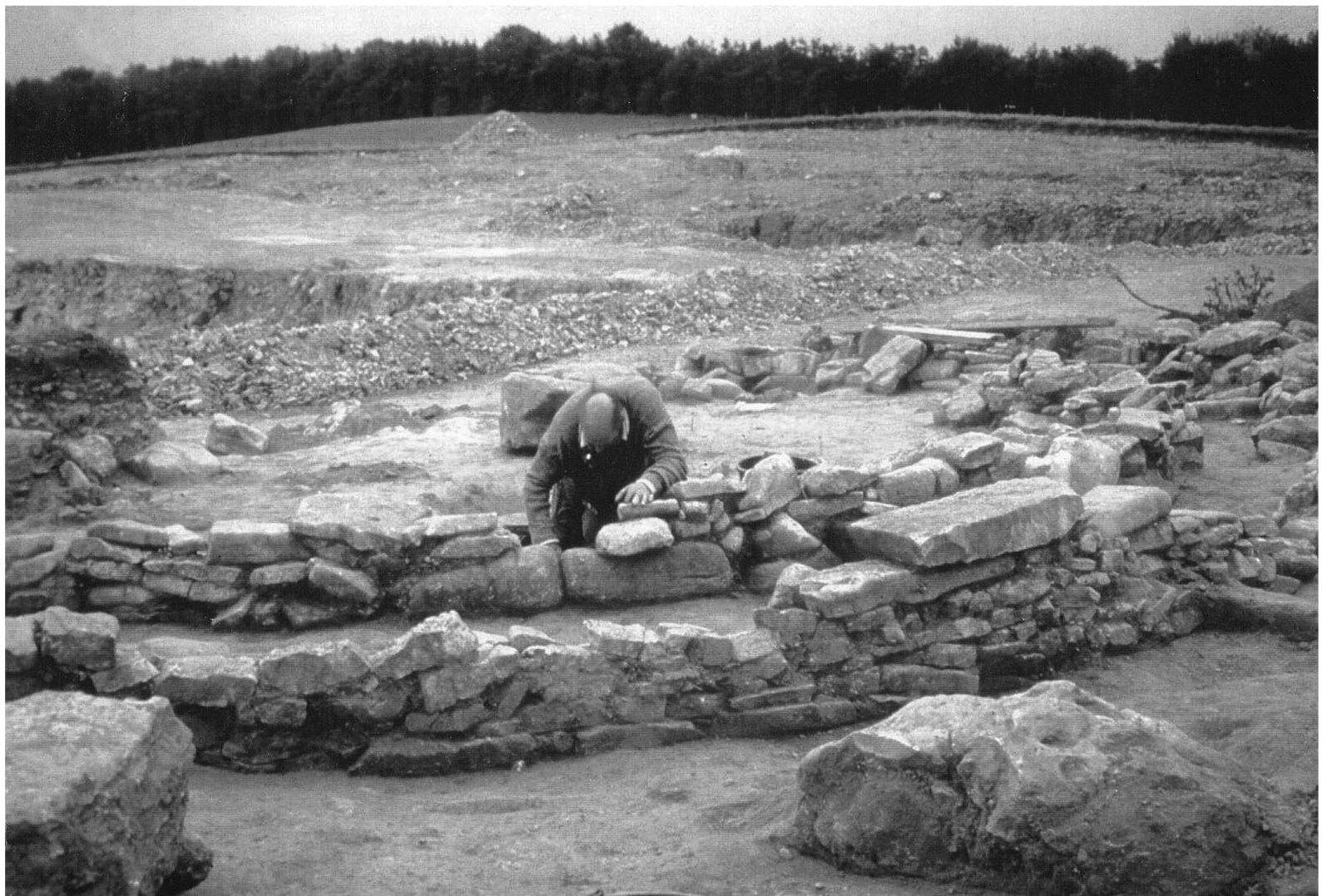 A photo showing several low stone walls, amongst rocks. A man is bending over one of the walls, looking closely down at the ground.