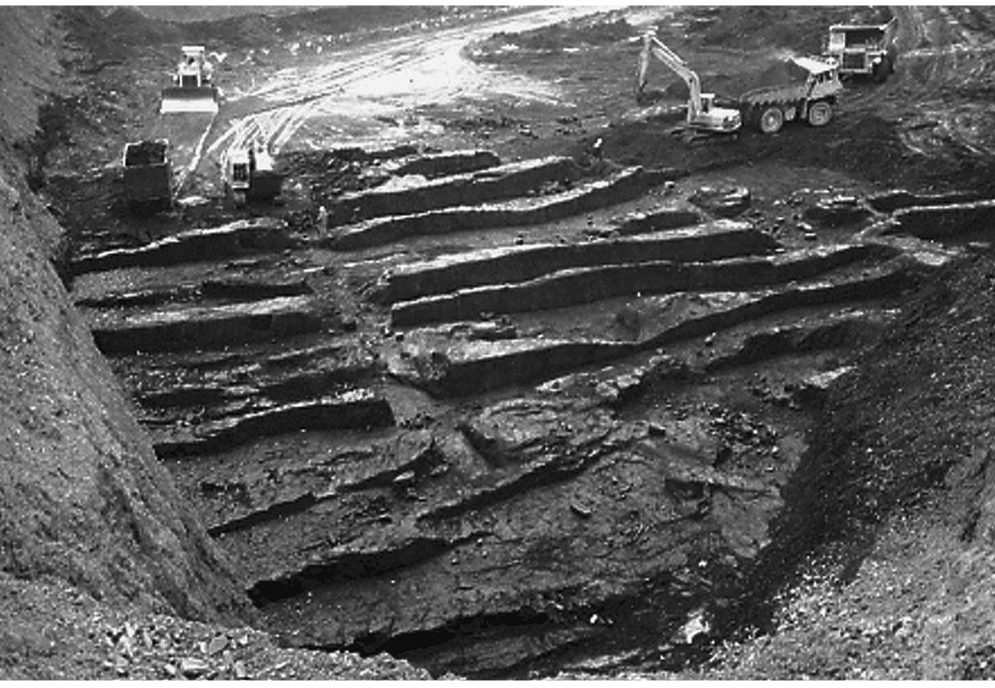 A black and white photograph of an open cast mine, taken from above. A complex structure of tunnels and excavations has been exposed, approximately 100 metres of which is visible.
