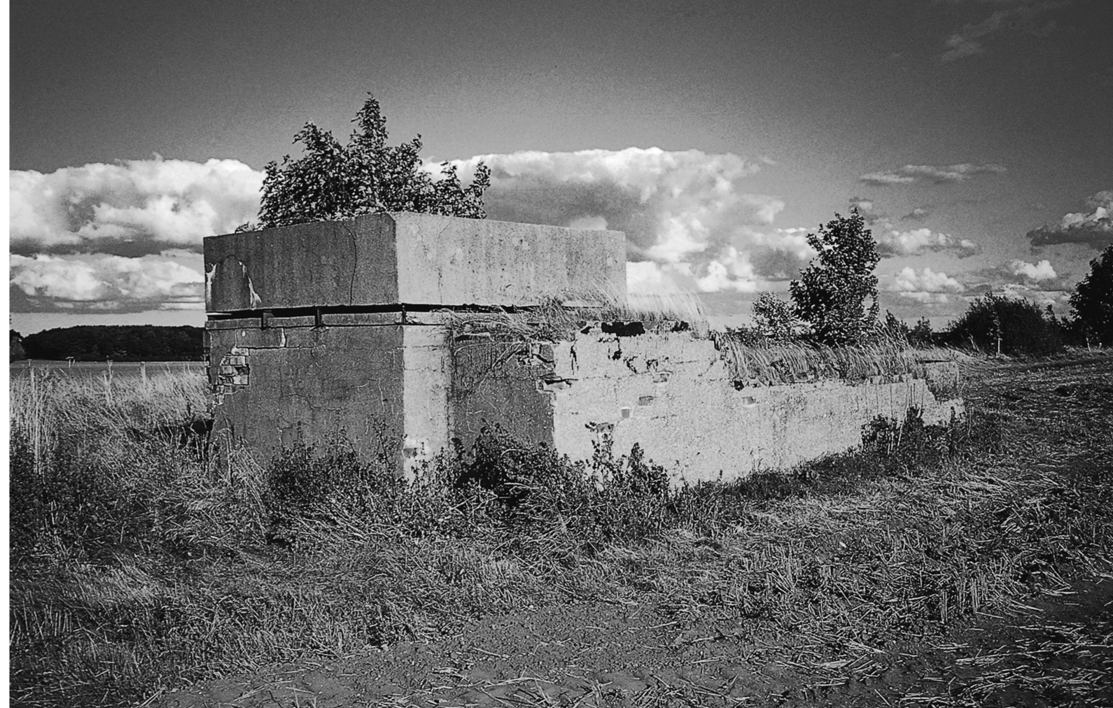 A black and white photograph showing a fortified concrete structure, overgrown with small trees and scrub.