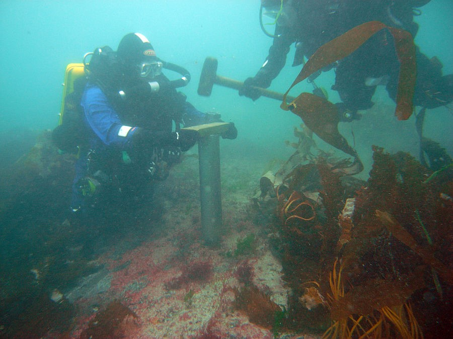 divers taking a core sample from a submerged peat deposit off the Isles of Scilly